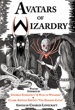 Avatars of Wizardry cover image